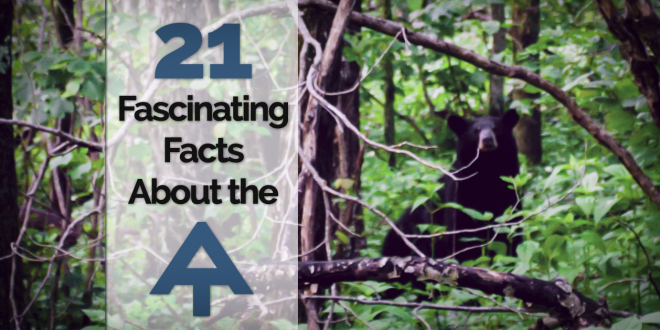 21 Fascinating Appalachian Trail Facts