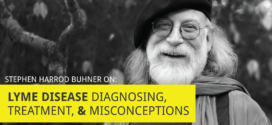 Why Western Medicine Misses the Mark on Lyme Disease: An Interview with Stephen Harrod Buhner