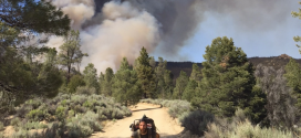 Fire Between Walker Pass And Kennedy Meadows